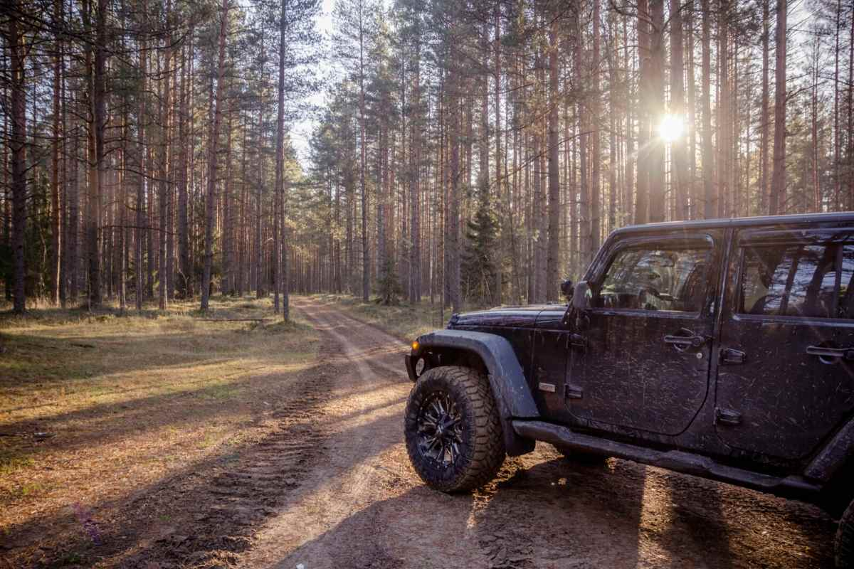 Jeep Wrangler Towing Capacity, What Boats Can a Jeep Wrangler Tow - 16 Examples