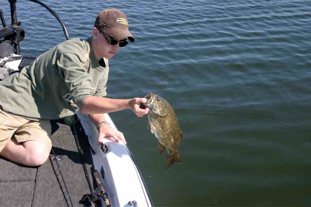 What Boat Brand does Bass Pro Own?