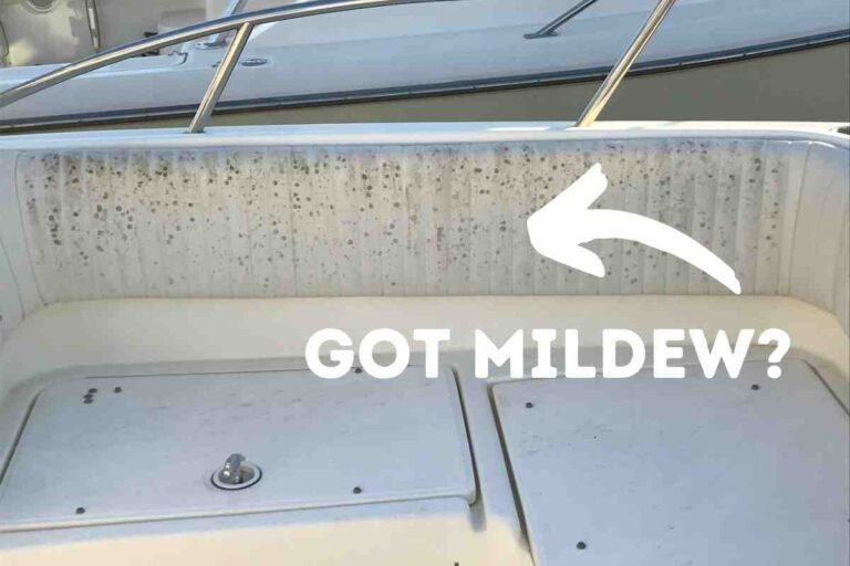 Best Boat Cleaner For Mildew Removal (Revealed!)
