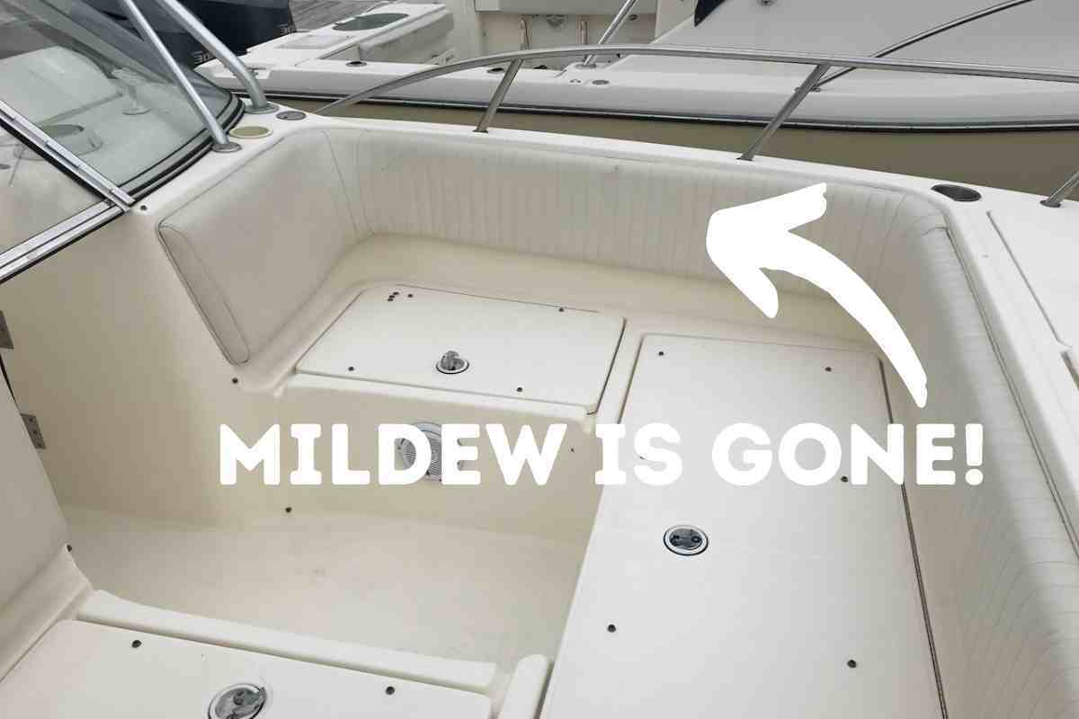 Best Boat Cleaner For Mildew Removal