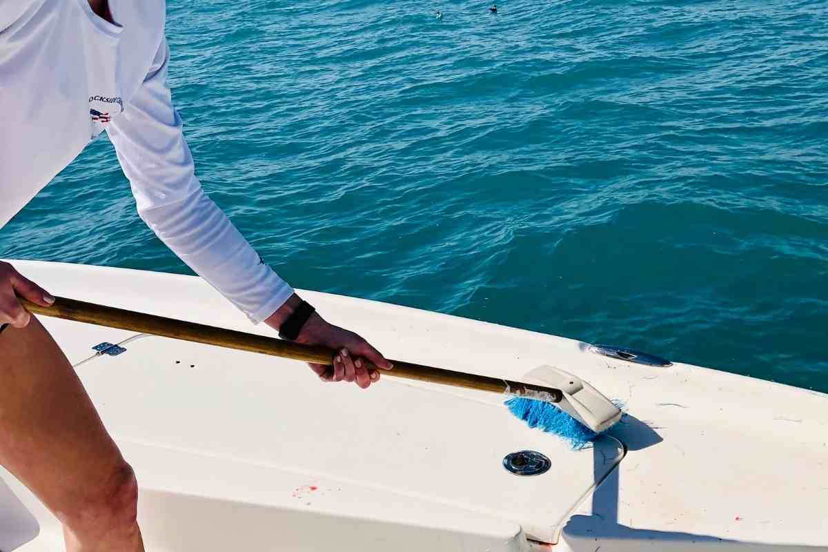 Best Boat Cleaner For Mildew Removal Nautical One Xtreme Mildew Remover – Best For All Boat Surfaces