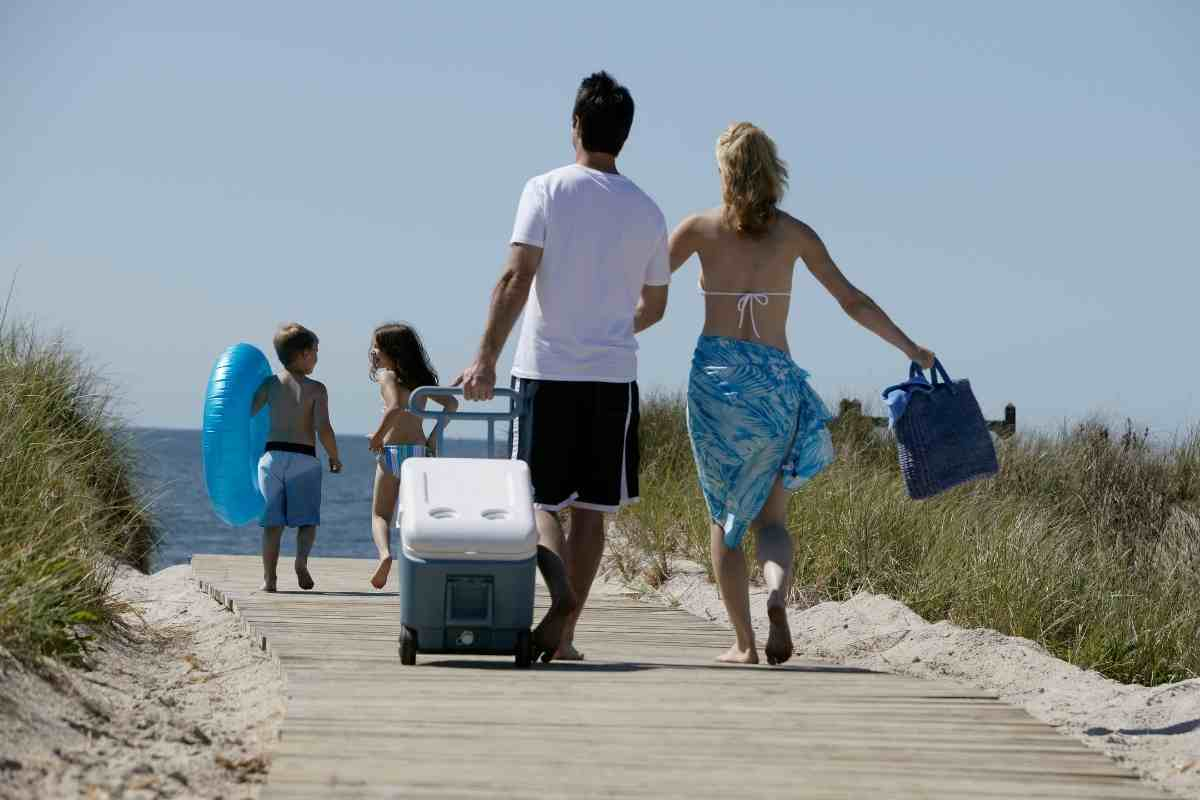 The Best Marine Cooler For The Money